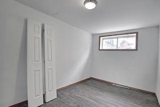 Photo 27: 4527 26 Avenue SE in Calgary: Dover Semi Detached for sale : MLS®# A1105139