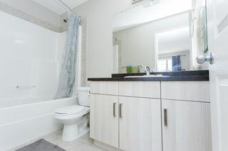 Photo 25: 4312 Prowse Link in Edmonton: Zone 55 House Half Duplex for sale : MLS®# E4262677