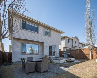Photo 35: 164 Royal Oak Heights NW in Calgary: Royal Oak Detached for sale : MLS®# A1100377