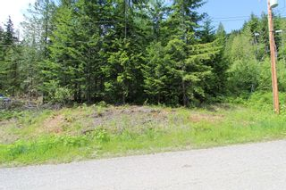 Photo 8: Lot 367 Fairview Road in Anglemont: North Shuswap, Anglemont Land Only for sale (Shuswap)  : MLS®# 10133376