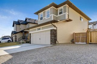Photo 45: 290 Hillcrest Heights SW: Airdrie Detached for sale : MLS®# A1039457