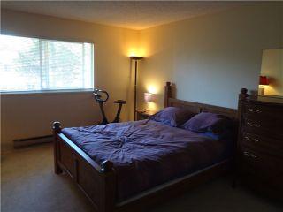 Photo 6: 21 11160 Kingsgrove Avenue in Cedar Grove Estates: Home for sale : MLS®#  V1026818