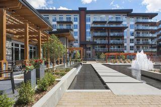 Photo 16: 509 12 Mahogany Path SE in Calgary: Mahogany Apartment for sale : MLS®# A1142007