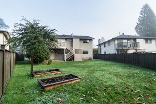 Photo 42: 3010 REECE Avenue in Coquitlam: Meadow Brook House for sale : MLS®# V1091860