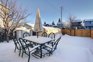 Photo 13: 148 Martinbrook Road NE in Calgary: Martindale Detached for sale : MLS®# A1069504