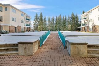Photo 23: 319 9449 19 Street SW in Calgary: Palliser Apartment for sale : MLS®# A1050342
