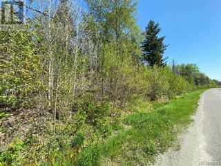 Photo 33: 5264 Rte 770 in Rollingdam: Vacant Land for sale : MLS®# NB058269
