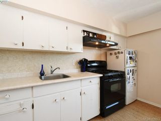 Photo 26: 453 Moss St in VICTORIA: Vi Fairfield West House for sale (Victoria)  : MLS®# 806984