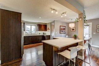 Photo 3: 4203 Dalhart Road NW in Calgary: Dalhousie Detached for sale : MLS®# A1143052