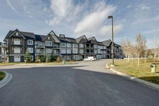 Photo 29: 1204 175 Silverado Boulevard SW in Calgary: Silverado Apartment for sale : MLS®# A1047504