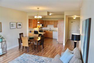 Photo 6: 218 767 Parkland Drive in Halifax: 5-Fairmount, Clayton Park, Rockingham Residential for sale (Halifax-Dartmouth)  : MLS®# 202011458