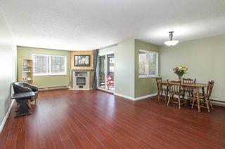Photo 4: 202 2344 ATKINS AVENUE in Port Coquitlam: Central Pt Coquitlam Condo for sale : MLS®# R2565721