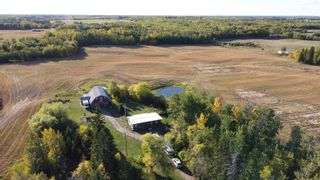 Photo 9: 51360 RGE RD 223: Rural Strathcona County House for sale : MLS®# E4266301