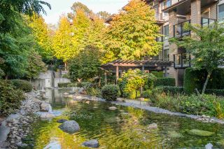 """Photo 34: 503 7488 BYRNEPARK Walk in Burnaby: South Slope Condo for sale in """"GREEN - AUTUMN"""" (Burnaby South)  : MLS®# R2505968"""