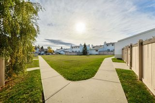 Photo 30: 168 MARLBOROUGH Place in Edmonton: Zone 20 Townhouse for sale : MLS®# E4264886