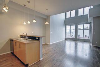 Photo 9: 407 10531 117 Street NW in Edmonton: Zone 08 Condo for sale : MLS®# E4265606