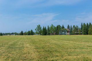 Photo 42: 2422 106A Street in Edmonton: Zone 16 House for sale : MLS®# E4254507