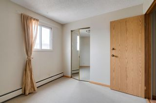 Photo 14: 8 1607 26 Avenue SW in Calgary: South Calgary Apartment for sale : MLS®# A1136488