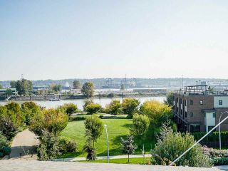 "Photo 35: 206 215 BROOKES Street in New Westminster: Queensborough Condo for sale in ""DOU B at Port Royal"" : MLS®# R2505494"