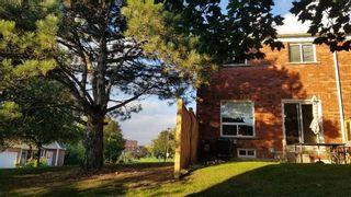 Photo 3: 149 10 Bassett Boulevard in Whitby: Pringle Creek Condo for lease : MLS®# E5397829