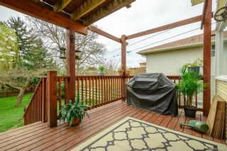 Photo 16: 419 Davida Ave in : SW Gorge House for sale (Saanich West)  : MLS®# 640686