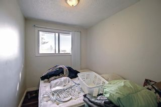 Photo 24: 1931 Pinetree Crescent NE in Calgary: Pineridge Detached for sale : MLS®# A1153335