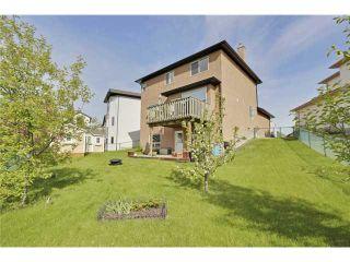 Photo 17: 4 BOW RIDGE Close: Cochrane Residential Detached Single Family for sale : MLS®# C3621463