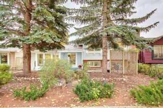 Photo 46: 248 Midlake Boulevard SE in Calgary: Midnapore Detached for sale : MLS®# A1144224