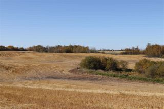 Photo 7: TWP 495 RR 232: Rural Leduc County Rural Land/Vacant Lot for sale : MLS®# E4216268