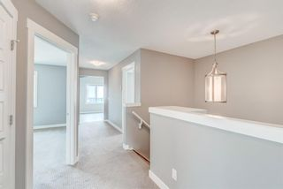 Photo 34: 292 Nolancrest Heights NW in Calgary: Nolan Hill Detached for sale : MLS®# A1130520