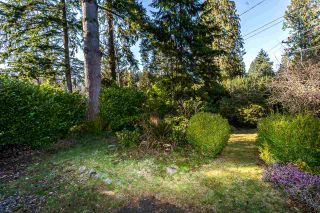 Photo 5: 785 GRANTHAM Place in North Vancouver: Seymour NV House for sale : MLS®# R2553567