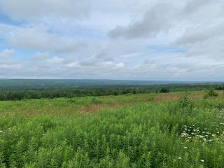 Photo 8: 587 Claremont Road in Claremont: 102S-South Of Hwy 104, Parrsboro and area Residential for sale (Northern Region)  : MLS®# 202116968