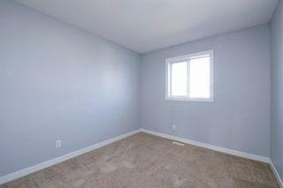Photo 29: 218 SADDLEBROOK Way NE in Calgary: Saddle Ridge Detached for sale : MLS®# A1037263