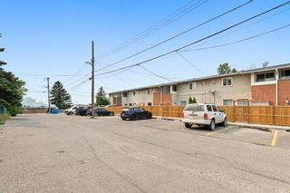 Photo 19: 13 1615 Mcgonigal Drive NE in Calgary: Mayland Heights Row/Townhouse for sale : MLS®# A1133752