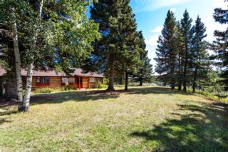 Photo 3: 15 Suitor Drive: Benchlands Detached for sale : MLS®# A1146182