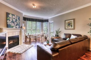 """Photo 2: 204 5646 200 Street in Langley: Langley City Condo for sale in """"Cambridge Court"""" : MLS®# R2384457"""