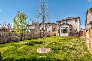 Photo 31: 158 Hillcrest Circle SW: Airdrie Detached for sale : MLS®# A1116968