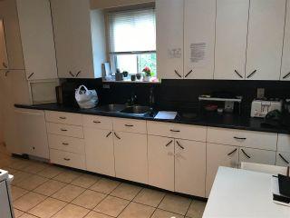 Photo 12: 20258 OSPRING Street in Maple Ridge: Southwest Maple Ridge House for sale : MLS®# R2590406