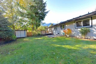 Photo 6: 38028 GUILFORD Drive in Squamish: Valleycliffe House for sale : MLS®# R2217229