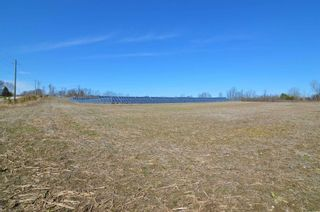 Photo 9: Vl Shelter Valley Road in Cramahe: Rural Cramahe Property for sale : MLS®# X5206281