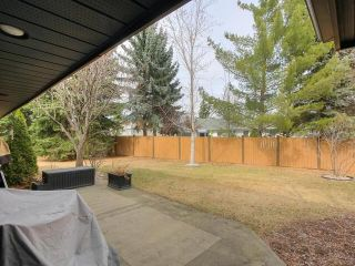 Photo 30: 2 14812 45 Avenue NW in Edmonton: Zone 14 Condo for sale : MLS®# E4242026