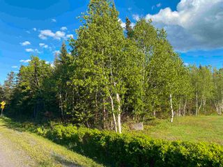 Photo 9: 16 acres Caribou Island Road in Caribou Island: 108-Rural Pictou County Vacant Land for sale (Northern Region)  : MLS®# 202104068