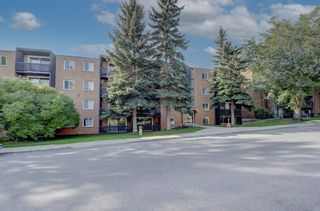 Photo 2: 403 507 57 Avenue SW in Calgary: Windsor Park Apartment for sale : MLS®# A1146991