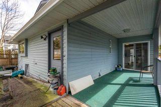 Photo 31: 12025 206B Street in Maple Ridge: Northwest Maple Ridge House for sale : MLS®# R2464942