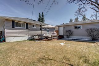 Photo 26: 11 Walnut Drive SW in Calgary: Wildwood Detached for sale : MLS®# A1098443