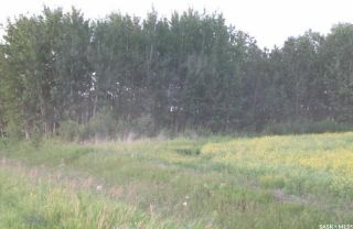 Photo 4: Tobin Lake Acreage Plot ( 5 Acres) in Moose Range: Lot/Land for sale (Moose Range Rm No. 486)  : MLS®# SK839734