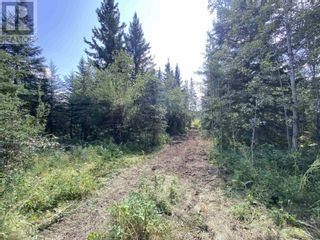 Photo 16: DL2350 TIMOTHY LAKE ROAD in Lac La Hache: Vacant Land for sale : MLS®# R2610977