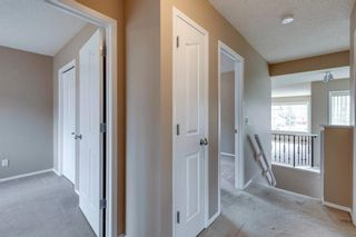 Photo 26: 131 Citadel Crest Green NW in Calgary: Citadel Detached for sale : MLS®# A1124177