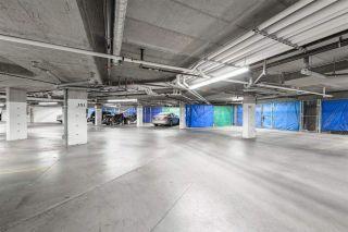 Photo 39: 235 503 Albany Way in Edmonton: Zone 27 Condo for sale : MLS®# E4211597