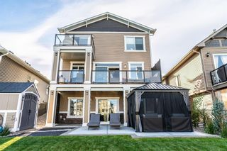 Photo 41: 373 Bayside Crescent SW: Airdrie Detached for sale : MLS®# A1151568